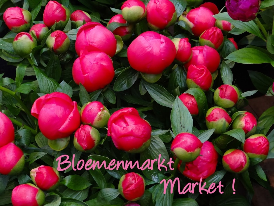 Art Daily Fix Bloemenmarkt Amsterdam