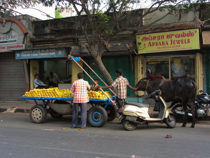 25052013-Inde 2012 (7)