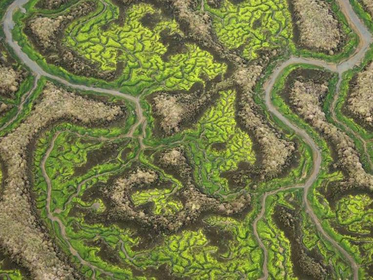 la-isla-minima-alberto-rodriguez-image3-le-passeur-critique
