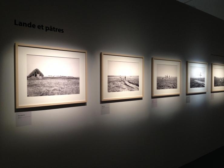 Felix Arnaudin Musée Aquitaine