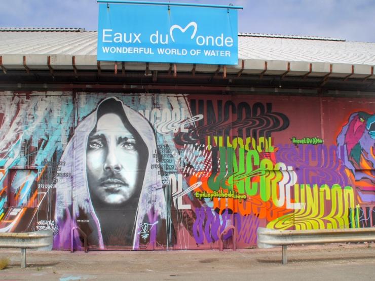 Shake Well Graffiti Bordeaux (16)